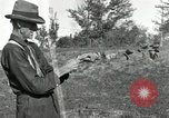 Image of apple grafting techniques United States USA, 1916, second 36 stock footage video 65675030538