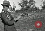 Image of apple grafting techniques United States USA, 1916, second 38 stock footage video 65675030538