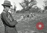 Image of apple grafting techniques United States USA, 1916, second 41 stock footage video 65675030538