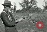 Image of apple grafting techniques United States USA, 1916, second 43 stock footage video 65675030538