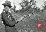 Image of apple grafting techniques United States USA, 1916, second 48 stock footage video 65675030538