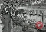 Image of apple grafting techniques United States USA, 1916, second 58 stock footage video 65675030538