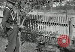 Image of apple grafting techniques United States USA, 1916, second 60 stock footage video 65675030538