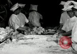 Image of apple pie manufacturing unit United States USA, 1916, second 15 stock footage video 65675030540