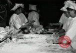 Image of apple pie manufacturing unit United States USA, 1916, second 16 stock footage video 65675030540