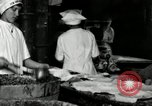 Image of apple pie manufacturing unit United States USA, 1916, second 32 stock footage video 65675030540