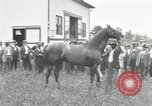 Image of Man O War Kentucky United States USA, 1924, second 14 stock footage video 65675030549