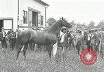 Image of Man O War Kentucky United States USA, 1924, second 15 stock footage video 65675030549