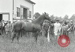 Image of Man O War Kentucky United States USA, 1924, second 17 stock footage video 65675030549