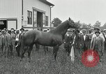 Image of Man O War Kentucky United States USA, 1924, second 19 stock footage video 65675030549