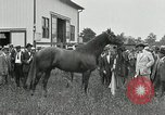 Image of Man O War Kentucky United States USA, 1924, second 22 stock footage video 65675030549