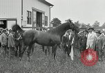 Image of Man O War Kentucky United States USA, 1924, second 23 stock footage video 65675030549