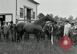 Image of Man O War Kentucky United States USA, 1924, second 30 stock footage video 65675030549