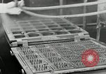 Image of Goodyear rubber heel manufacture Windsor Vermont USA, 1941, second 24 stock footage video 65675030565