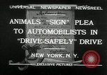 Image of Boy Scouts at Bronx Zoo New York United States USA, 1932, second 1 stock footage video 65675030578