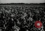 Image of Ohio agriculture and industry Ohio United States USA, 1951, second 16 stock footage video 65675030585