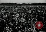 Image of Ohio agriculture and industry Ohio United States USA, 1951, second 19 stock footage video 65675030585