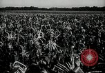 Image of Ohio agriculture and industry Ohio United States USA, 1951, second 20 stock footage video 65675030585