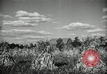 Image of Ohio agriculture and industry Ohio United States USA, 1951, second 34 stock footage video 65675030585