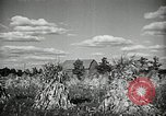 Image of Ohio agriculture and industry Ohio United States USA, 1951, second 36 stock footage video 65675030585