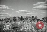 Image of Ohio agriculture and industry Ohio United States USA, 1951, second 39 stock footage video 65675030585