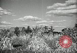Image of Ohio agriculture and industry Ohio United States USA, 1951, second 42 stock footage video 65675030585