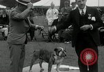 Image of Dog show Madison New Jersey USA, 1934, second 43 stock footage video 65675030596