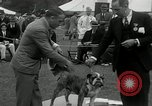 Image of Dog show Madison New Jersey USA, 1934, second 45 stock footage video 65675030596