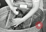 Image of Domestic chores without electricity Saint Clairsville Ohio USA, 1940, second 47 stock footage video 65675030602