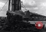 Image of P-38 plane assembly Australia, 1942, second 61 stock footage video 65675030611