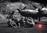 Image of P-38 planes of 80th fighter squadron Pacific Theater, 1944, second 26 stock footage video 65675030621