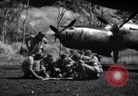 Image of P-38 planes of 80th fighter squadron Pacific Theater, 1944, second 27 stock footage video 65675030621