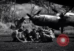 Image of P-38 planes of 80th fighter squadron Pacific Theater, 1944, second 30 stock footage video 65675030621