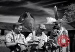 Image of P-38 planes of 80th fighter squadron Pacific Theater, 1944, second 43 stock footage video 65675030621