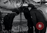 Image of ME-262 aircraft up on maintenance stands Germany, 1943, second 41 stock footage video 65675030710