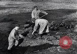 Image of block houses Eastern Front European Theater, 1942, second 49 stock footage video 65675030724