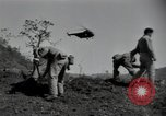 Image of US Army helicopters Korea, 1950, second 5 stock footage video 65675030811