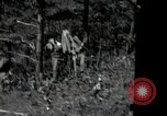 Image of US Army helicopters Korea, 1950, second 12 stock footage video 65675030811