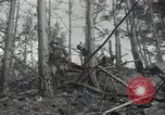 Image of US Army helicopters Korea, 1950, second 23 stock footage video 65675030811