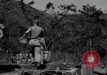 Image of US Army helicopters Korea, 1950, second 59 stock footage video 65675030811