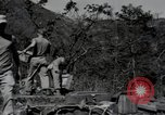 Image of US Army helicopters Korea, 1950, second 60 stock footage video 65675030811