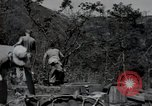 Image of US Army helicopters Korea, 1950, second 61 stock footage video 65675030811