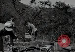 Image of US Army helicopters Korea, 1950, second 62 stock footage video 65675030811