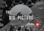 Image of US Army 24th Division Korea, 1950, second 42 stock footage video 65675030816