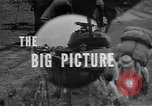 Image of US Army 24th Division Korea, 1950, second 46 stock footage video 65675030816