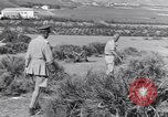 Image of General Mark W Clark North Africa, 1944, second 38 stock footage video 65675030847