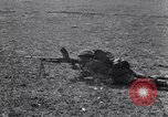 Image of British Infantry Southern Italy, 1943, second 20 stock footage video 65675030852