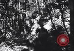 Image of 155mm artillery Italy, 1943, second 17 stock footage video 65675030875