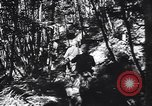 Image of 155mm artillery Italy, 1943, second 18 stock footage video 65675030875