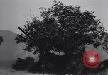 Image of 155mm artillery Italy, 1943, second 31 stock footage video 65675030875